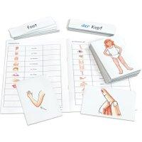 Betzold Flash Cards - Mein Körper